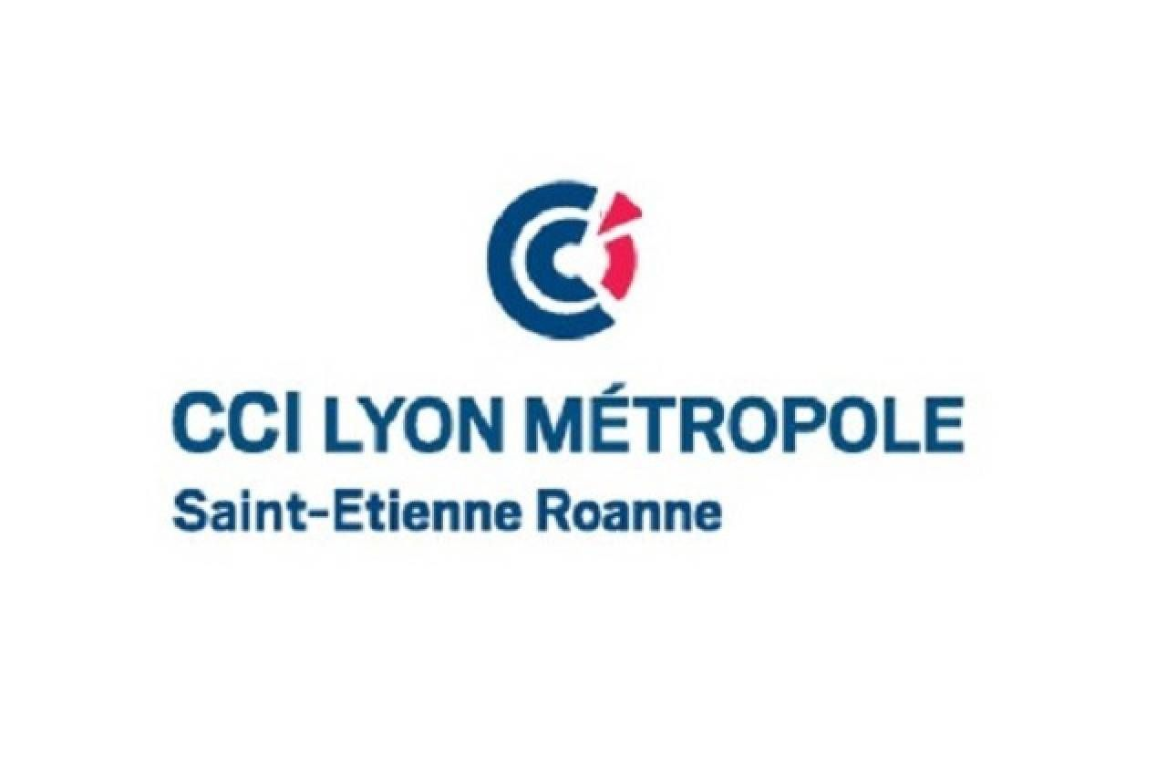 CCI LYON METROPOLE - Association Arts Pentes
