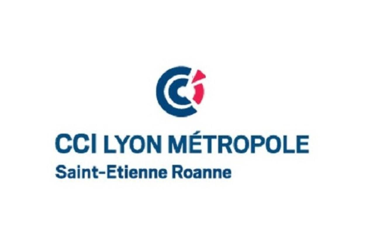 CCI LYON METROPOLE - Association des commercants du passage de l argue (ACPA)