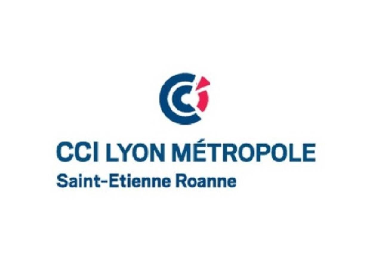CCI LYON METROPOLE - Association des commer�ants Grand Angle